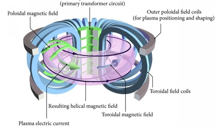 Tracking the Tokamak